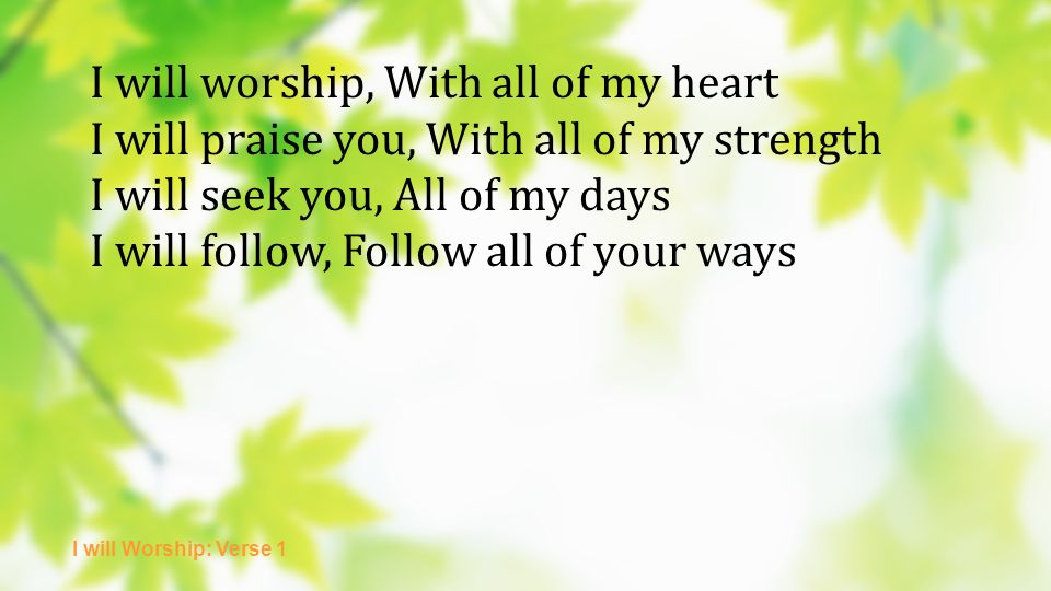 I will worship, With all of my heart I will praise you, With all of my strength I will seek you, All of my days I will follow, Follow all of your ways I will Worship: Verse 1