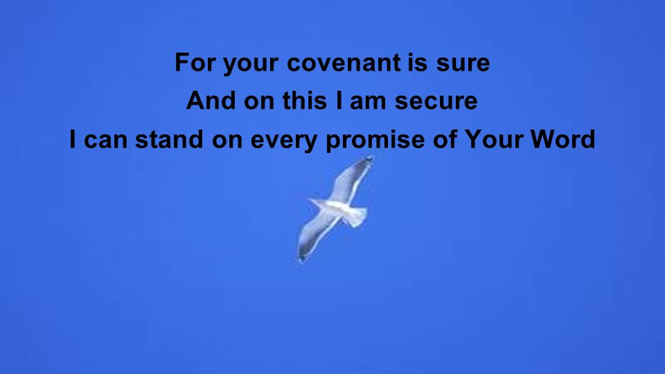 For your covenant is sure And on this I am secure I can stand on every promise of Your Word