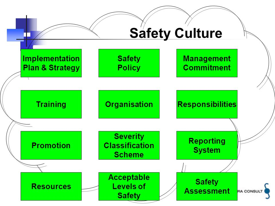 4 Implementation Plan & Strategy TrainingOrganisation Safety Policy Management Commitment Responsibilities Severity Classification Scheme Reporting System Acceptable Levels of Safety Safety Culture Safety Assessment Promotion Resources