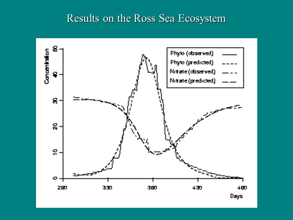 Results on the Ross Sea Ecosystem