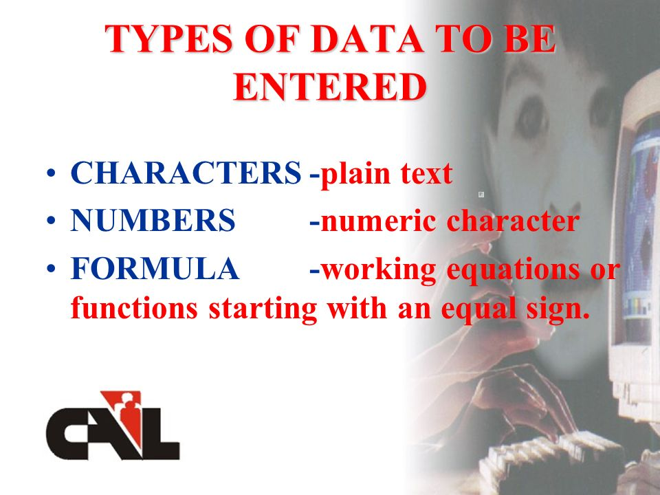 TYPES OF DATA TO BE ENTERED CHARACTERS-plain text NUMBERS-numeric character FORMULA-working equations or functions starting with an equal sign.