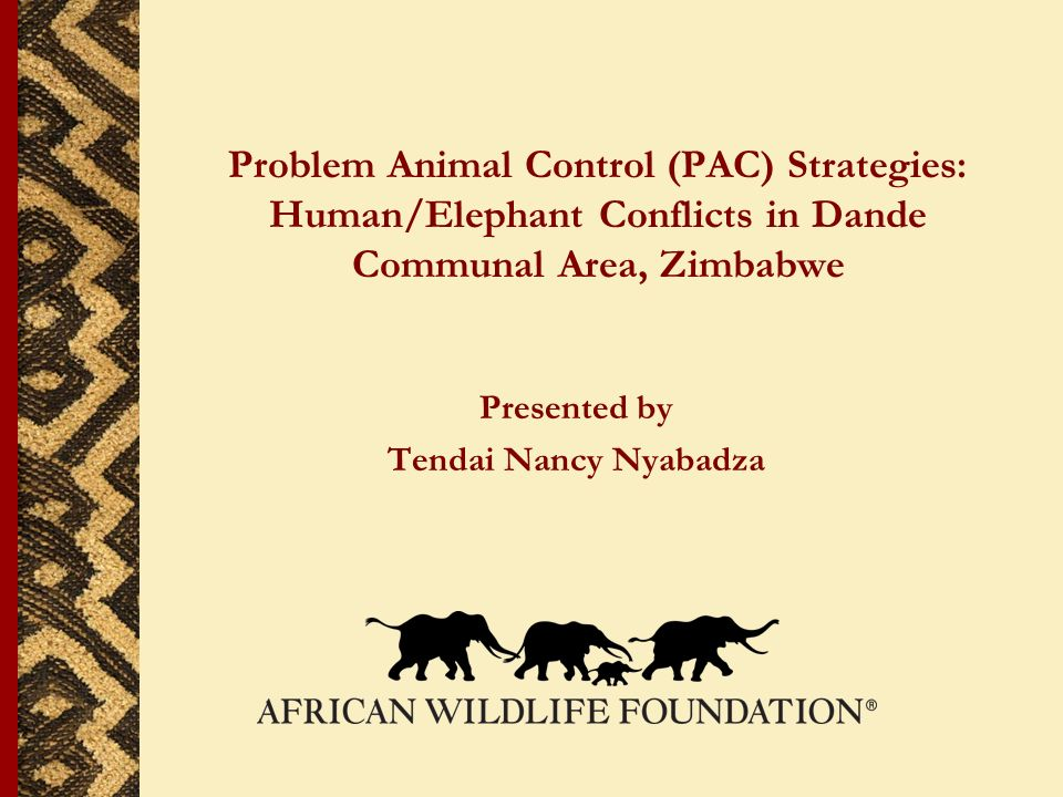 Problem Animal Control (PAC) Strategies: Human/Elephant Conflicts in Dande Communal Area, Zimbabwe Presented by Tendai Nancy Nyabadza