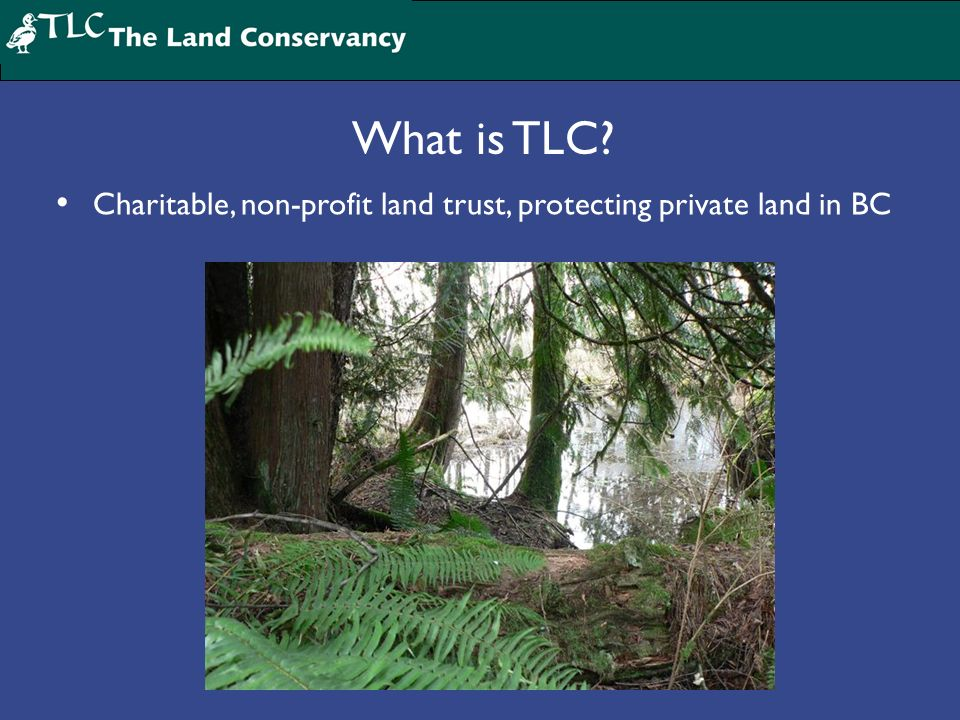 What is TLC Charitable, non-profit land trust, protecting private land in BC