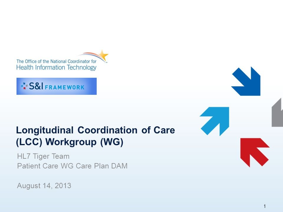 Longitudinal Coordination of Care (LCC) Workgroup (WG) HL7 Tiger Team Patient Care WG Care Plan DAM August 14, 2013 1