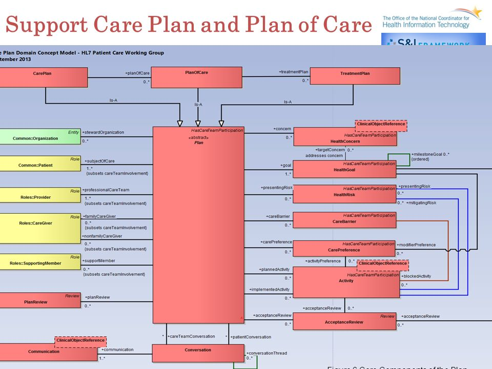 9 Support Care Plan and Plan of Care Figure 6 Core Components of the Plan