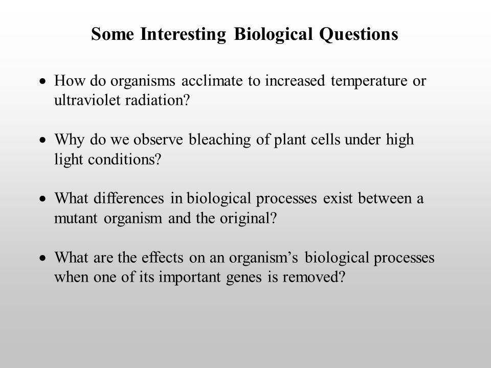 Some Interesting Biological Questions How do organisms acclimate to increased temperature or ultraviolet radiation.