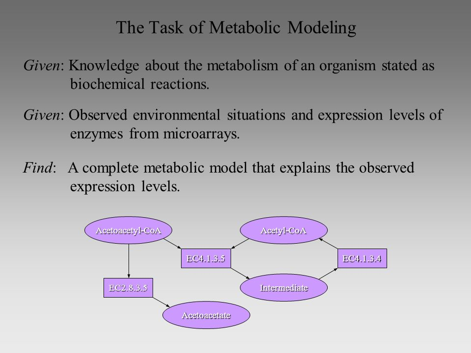 The Task of Metabolic Modeling Given: Knowledge about the metabolism of an organism stated as biochemical reactions.