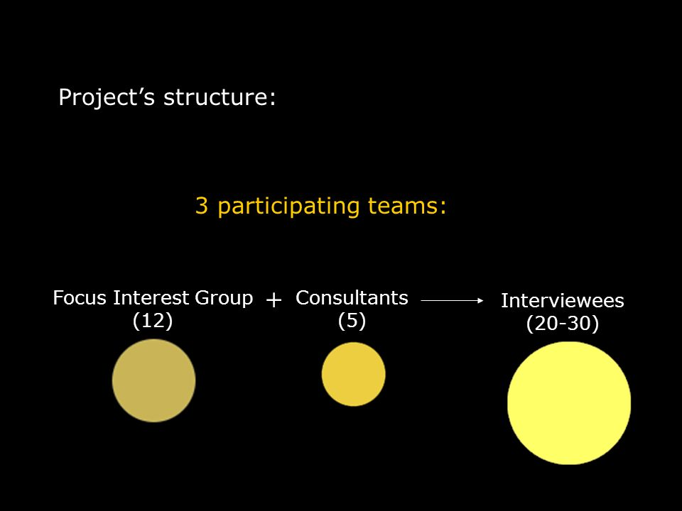 Projects structure: 3 participating teams: Consultants (5) Focus Interest Group (12) Interviewees (20-30) +