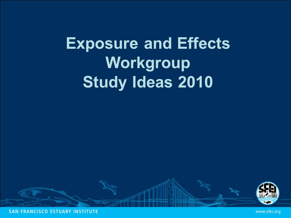 Exposure and Effects Workgroup Study Ideas 2010