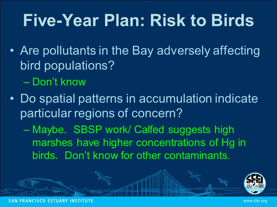 Five-Year Plan: Risk to Birds Are pollutants in the Bay adversely affecting bird populations.