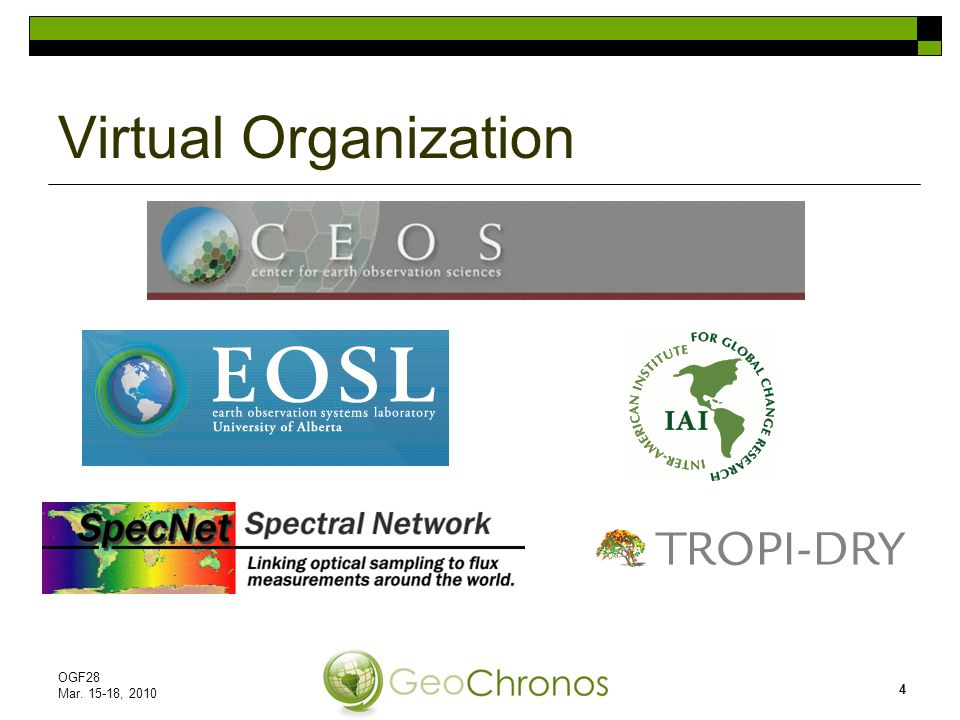 Virtual Organization OGF28 Mar. 15-18, 2010 4