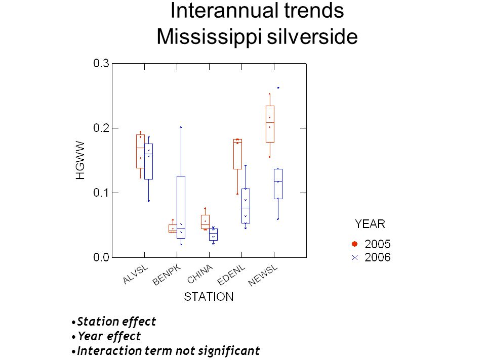 Station effect Year effect Interaction term not significant Interannual trends Mississippi silverside