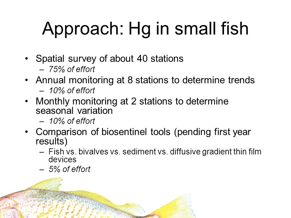 Approach: Hg in small fish Spatial survey of about 40 stations –75% of effort Annual monitoring at 8 stations to determine trends –10% of effort Monthly monitoring at 2 stations to determine seasonal variation –10% of effort Comparison of biosentinel tools (pending first year results) –Fish vs.