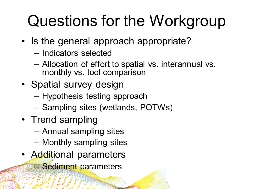Questions for the Workgroup Is the general approach appropriate.