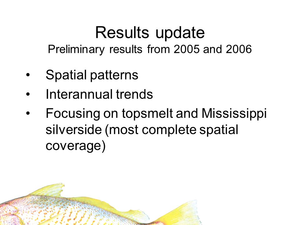 Results update Preliminary results from 2005 and 2006 Spatial patterns Interannual trends Focusing on topsmelt and Mississippi silverside (most complete spatial coverage)