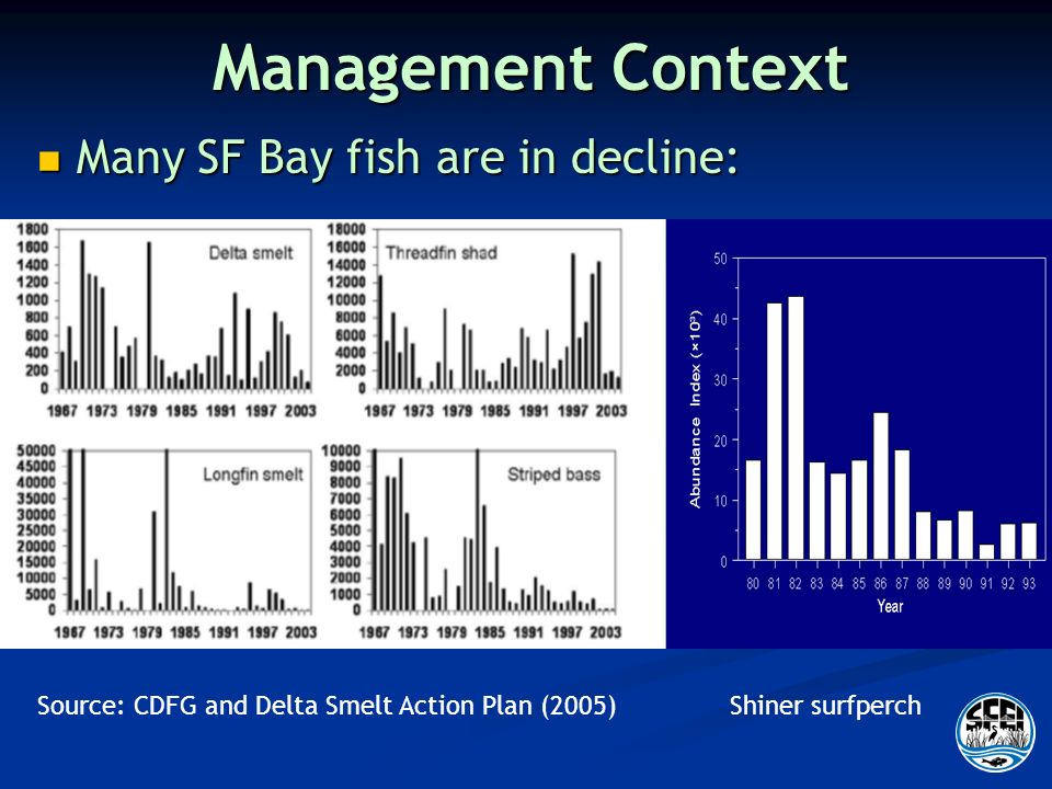 Management Context Many SF Bay fish are in decline: Many SF Bay fish are in decline: Shiner surfperchSource: CDFG and Delta Smelt Action Plan (2005)