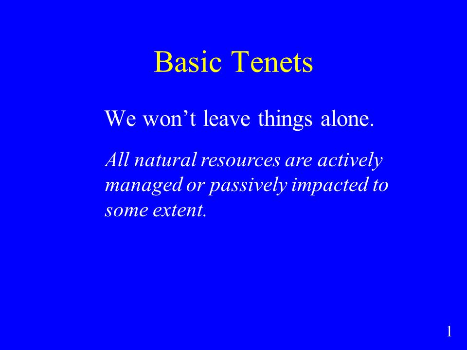 Basic Tenets We wont leave things alone.