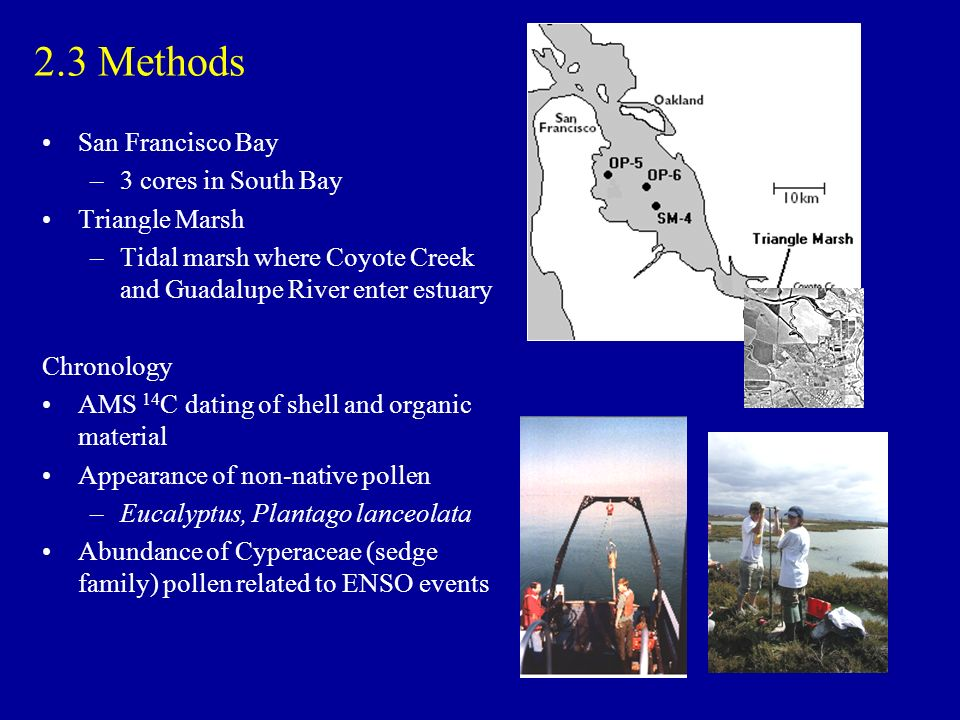 2.3 Methods San Francisco Bay –3 cores in South Bay Triangle Marsh –Tidal marsh where Coyote Creek and Guadalupe River enter estuary Chronology AMS 14 C dating of shell and organic material Appearance of non-native pollen –Eucalyptus, Plantago lanceolata Abundance of Cyperaceae (sedge family) pollen related to ENSO events