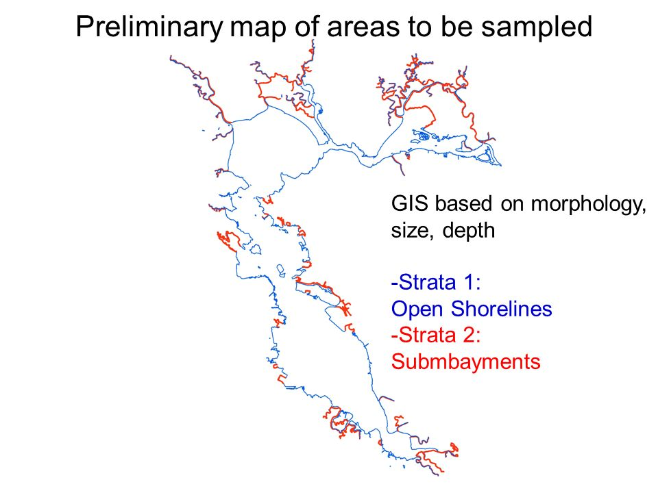 Preliminary map of areas to be sampled GIS based on morphology, size, depth -Strata 1: Open Shorelines -Strata 2: Submbayments