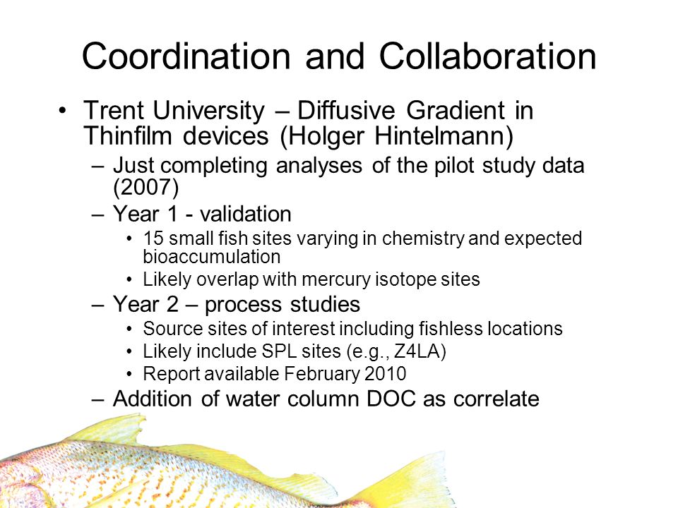 Coordination and Collaboration Trent University – Diffusive Gradient in Thinfilm devices (Holger Hintelmann) –Just completing analyses of the pilot study data (2007) –Year 1 - validation 15 small fish sites varying in chemistry and expected bioaccumulation Likely overlap with mercury isotope sites –Year 2 – process studies Source sites of interest including fishless locations Likely include SPL sites (e.g., Z4LA) Report available February 2010 –Addition of water column DOC as correlate