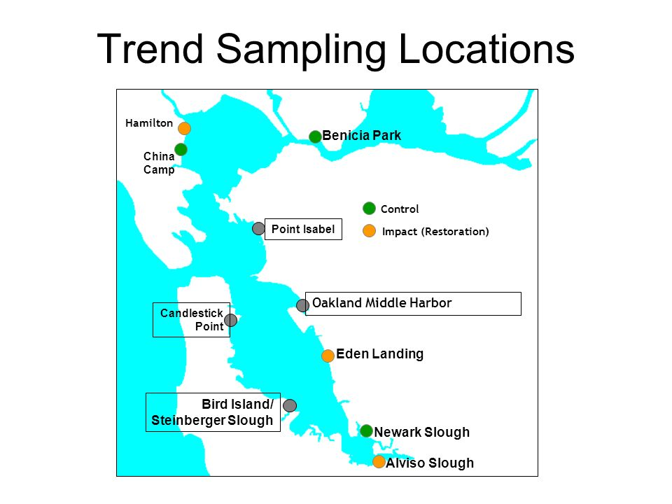 Trend Sampling Locations Alviso Slough Newark Slough Bird Island/ Steinberger Slough Eden Landing China Camp Benicia Park Control Impact (Restoration) Point Isabel Candlestick Point Hamilton Oakland Middle Harbor