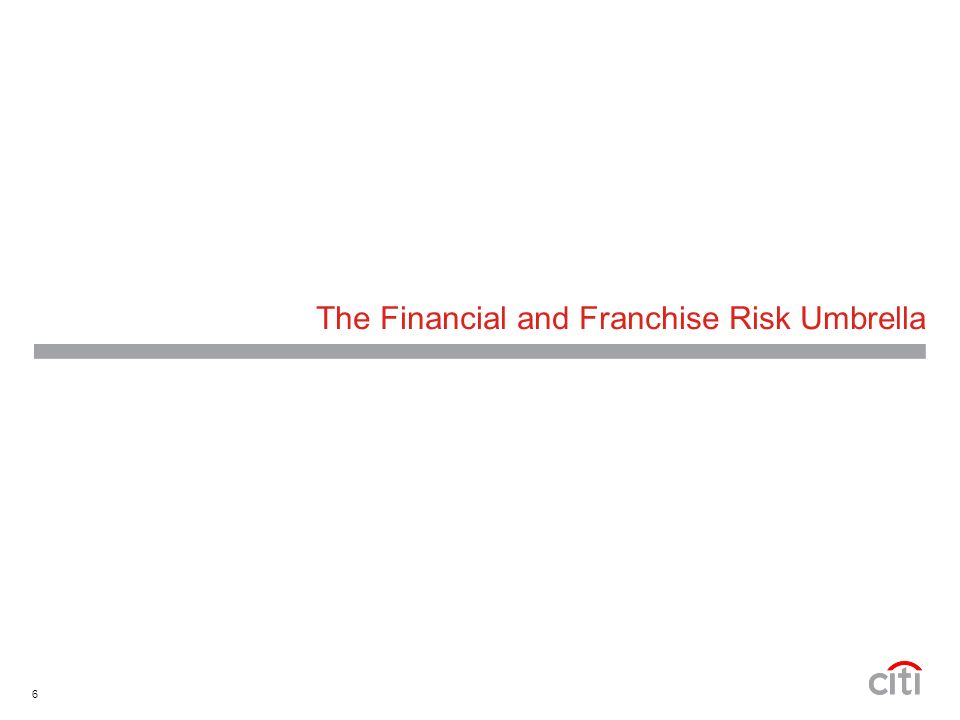 6 The Financial and Franchise Risk Umbrella