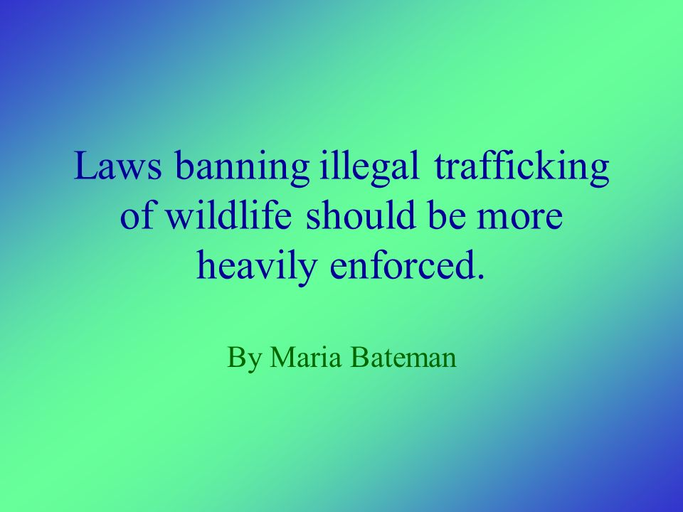 Laws banning illegal trafficking of wildlife should be more heavily enforced. By Maria Bateman