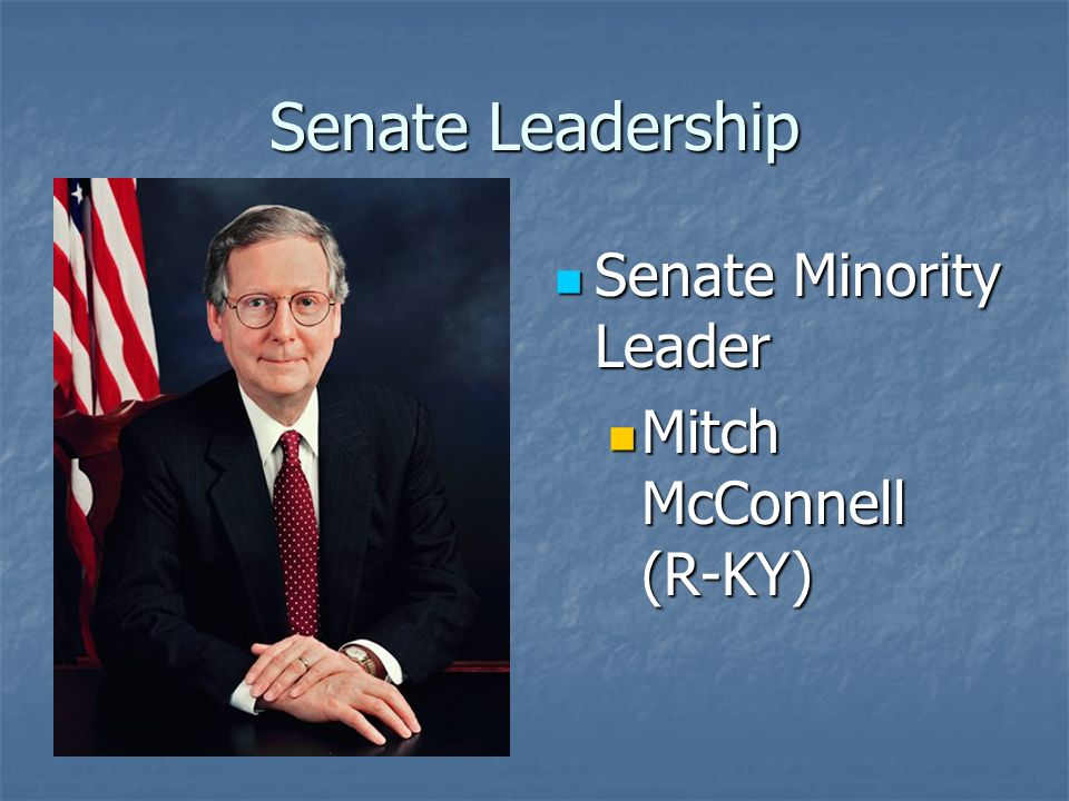 Senate Leadership Senate Majority Whip Senate Majority Whip Richard Dick Durbin (D-IL) Richard Dick Durbin (D-IL)