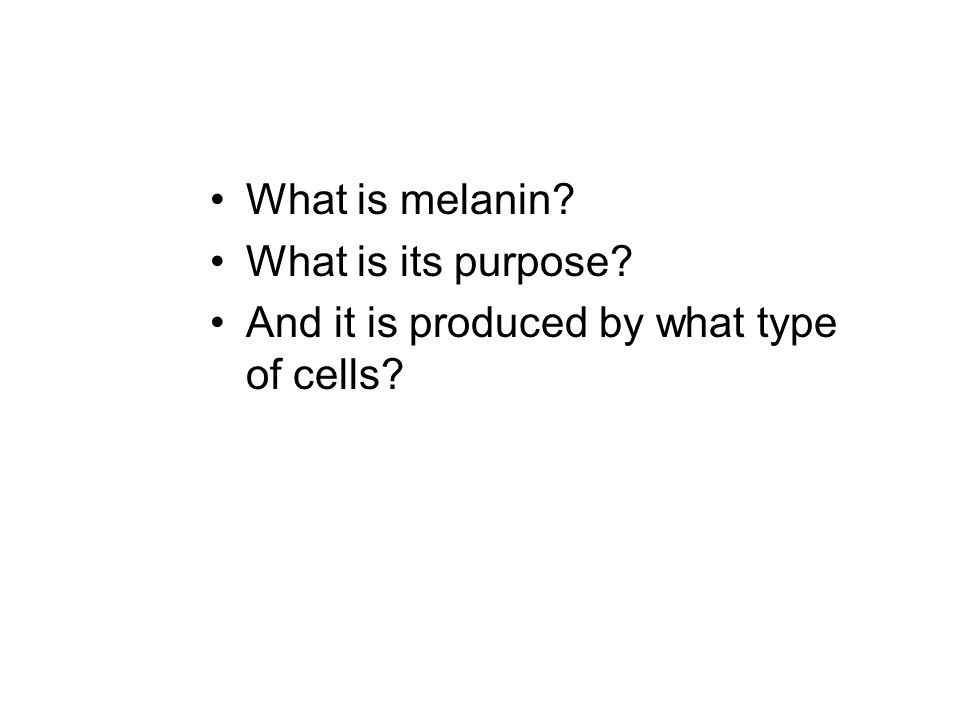 What is melanin What is its purpose And it is produced by what type of cells