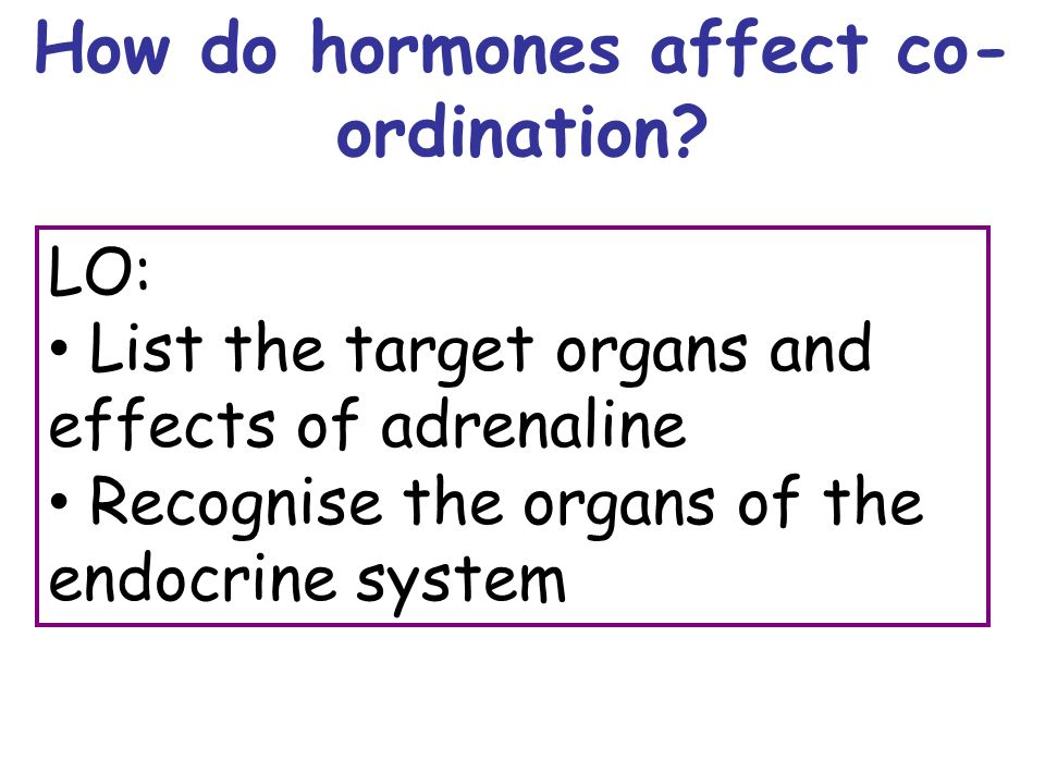 LO: List the target organs and effects of adrenaline Recognise the organs of the endocrine system How do hormones affect co- ordination
