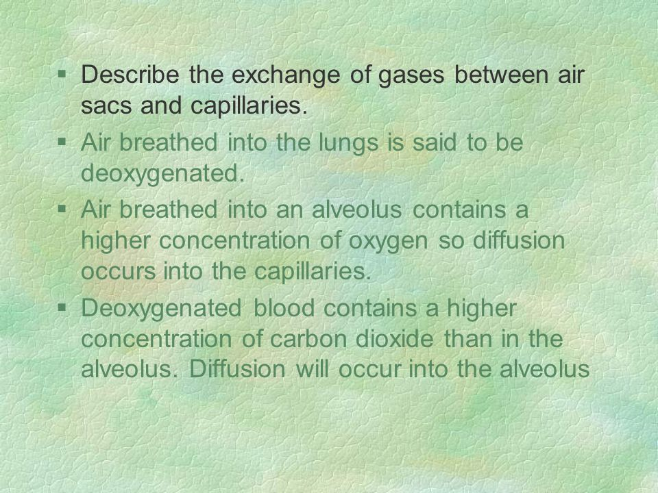 §Describe the exchange of gases between air sacs and capillaries.