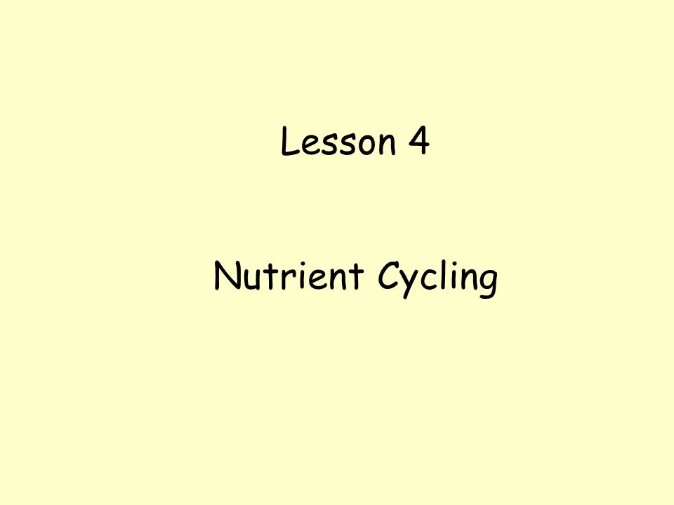 Lesson 4 Nutrient Cycling