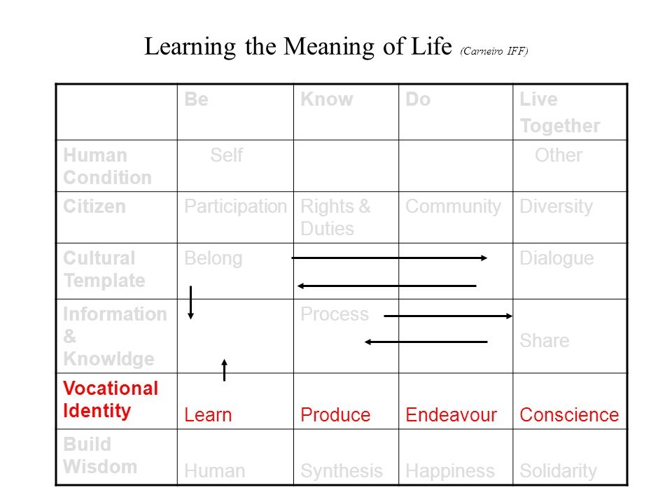 Learning the Meaning of Life (Carneiro IFF) BeKnowDoLive Together Human Condition Self Other CitizenParticipationRights & Duties CommunityDiversity Cultural Template BelongDialogue Information & Knowldge Process Share Vocational Identity LearnProduceEndeavourConscience Build Wisdom HumanSynthesisHappinessSolidarity