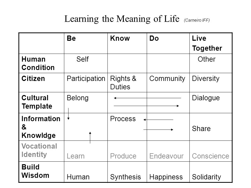 BeKnowDoLive Together Human Condition Self Other CitizenParticipationRights & Duties CommunityDiversity Cultural Template BelongDialogue Information & Knowldge Process Share Vocational Identity LearnProduceEndeavourConscience Build Wisdom HumanSynthesisHappinessSolidarity Learning the Meaning of Life (Carneiro IFF)
