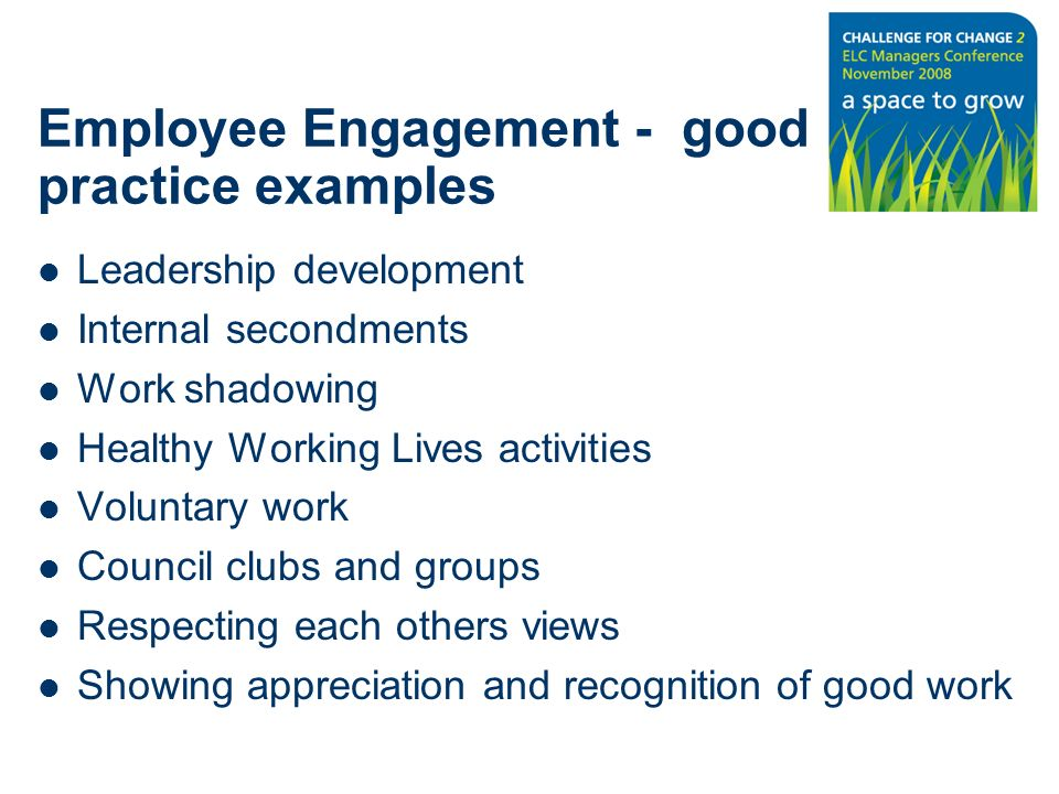 Employee Engagement - good practice examples Leadership development Internal secondments Work shadowing Healthy Working Lives activities Voluntary work Council clubs and groups Respecting each others views Showing appreciation and recognition of good work