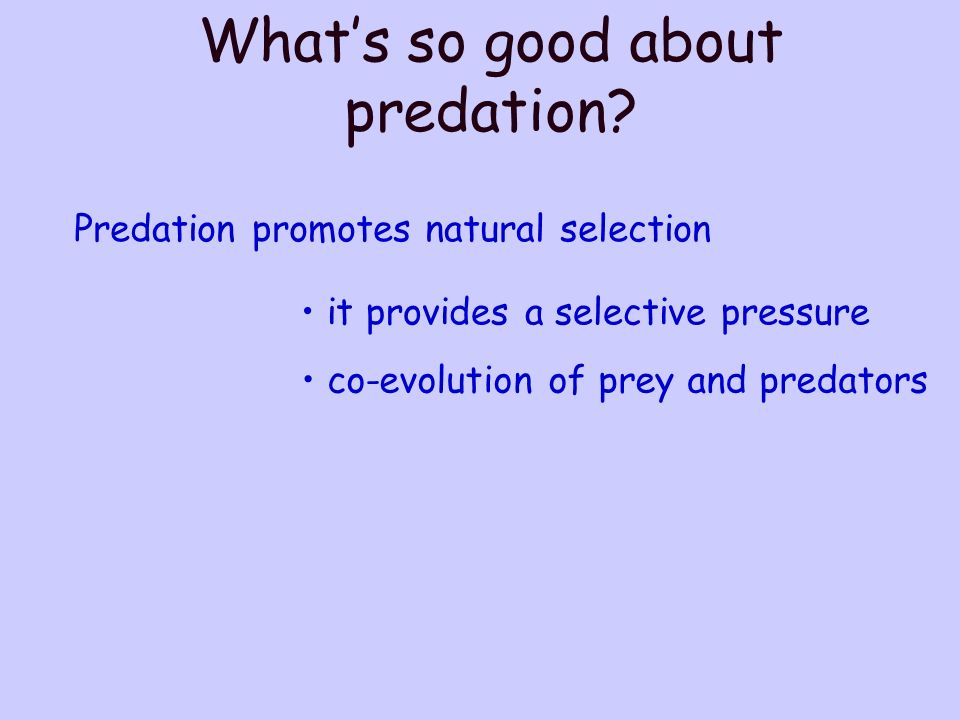 Predation promotes natural selection it provides a selective pressure co-evolution of prey and predators Whats so good about predation