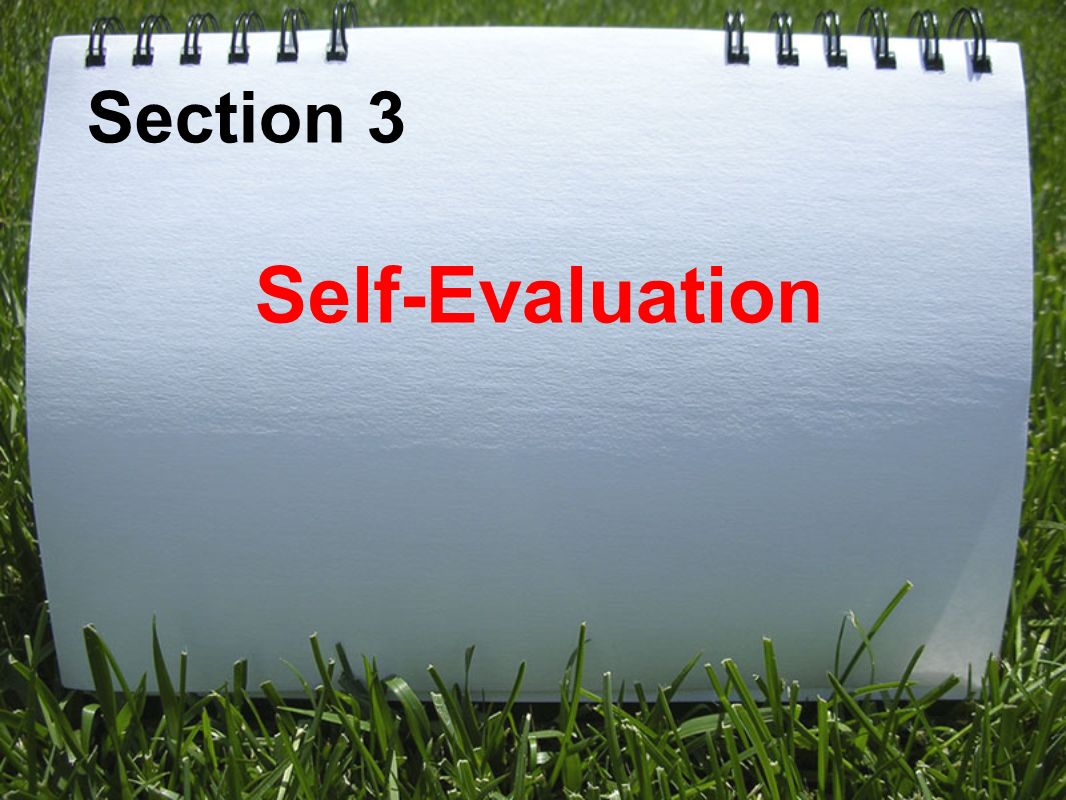 Section 3 Self-Evaluation