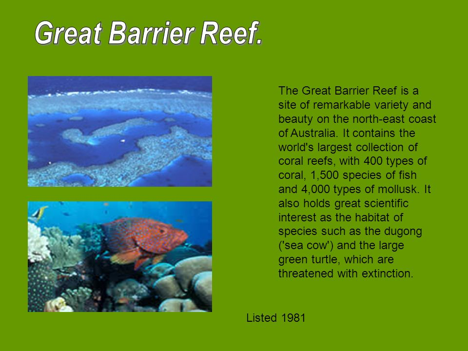 The Great Barrier Reef is a site of remarkable variety and beauty on the north-east coast of Australia.