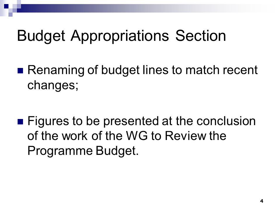 4 Budget Appropriations Section Renaming of budget lines to match recent changes; Figures to be presented at the conclusion of the work of the WG to Review the Programme Budget.