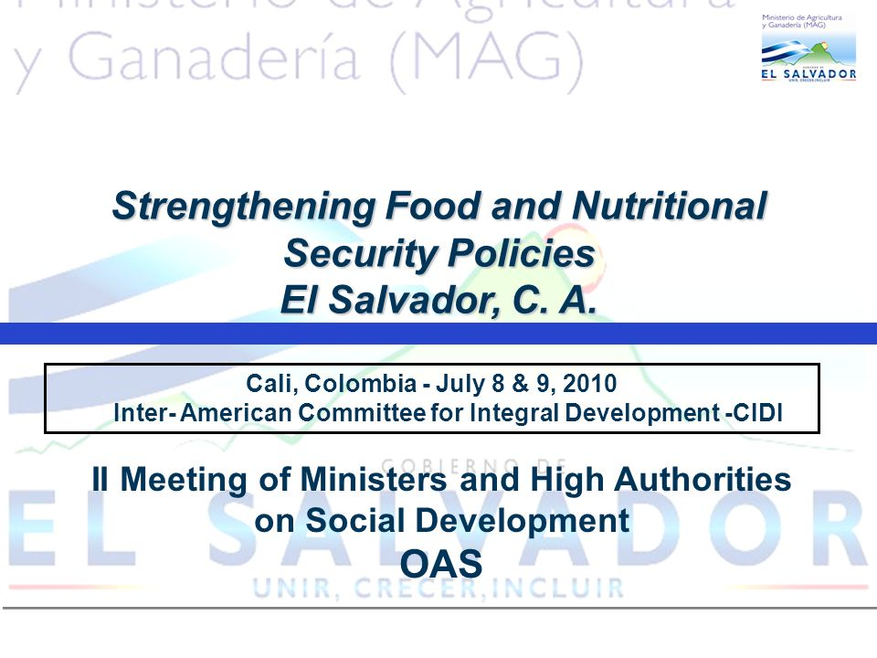 Cali, Colombia - July 8 & 9, 2010 Inter- American Committee for Integral Development -CIDI Strengthening Food and Nutritional Security Policies El Salvador, C.