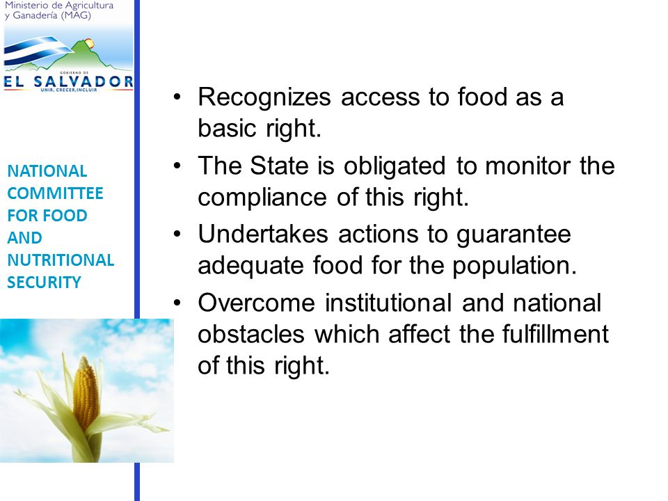 NATIONAL COMMITTEE FOR FOOD AND NUTRITIONAL SECURITY Recognizes access to food as a basic right.