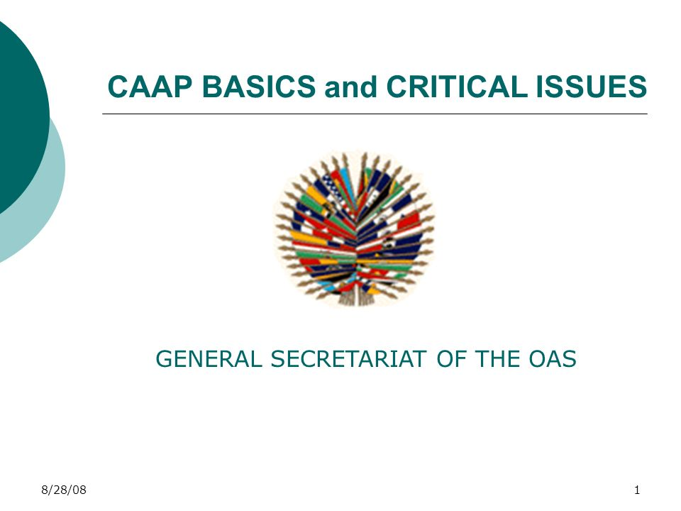 1 8 28 081 CAAP BASICS and CRITICAL ISSUES GENERAL SECRETARIAT OF THE OAS 1b0778a2f