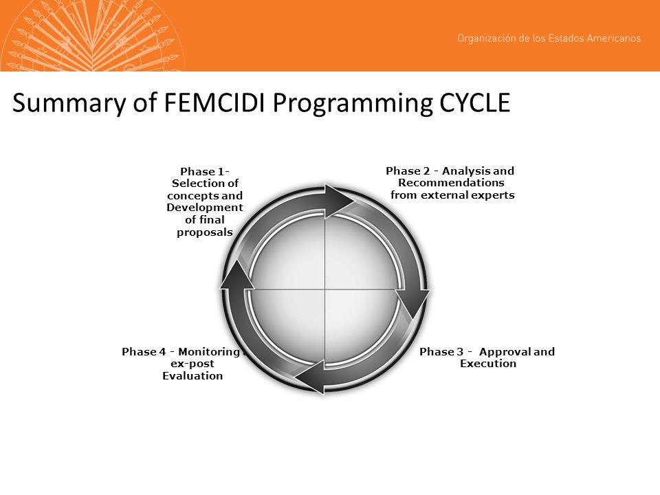 Summary of FEMCIDI Programming CYCLE Phase 1- Selection of concepts and Development of final proposals Phase 2 - Analysis and Recommendations from external experts Phase 4 - Monitoring and ex-post Evaluation Phase 3 - Approval and Execution