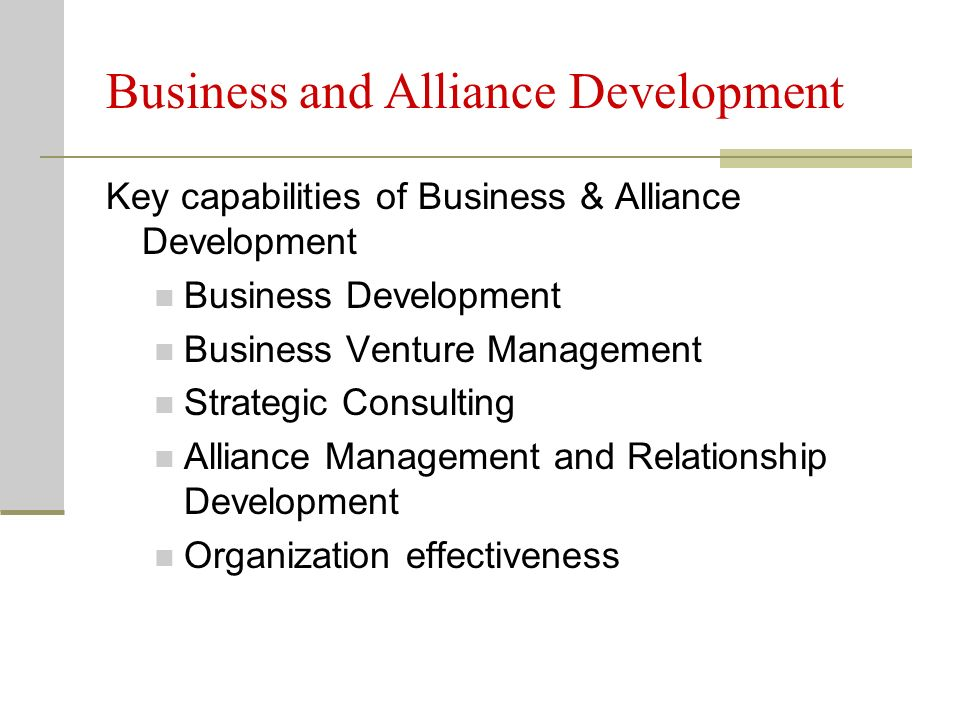 Business and Alliance Development Key capabilities of Business & Alliance Development Business Development Business Venture Management Strategic Consulting Alliance Management and Relationship Development Organization effectiveness