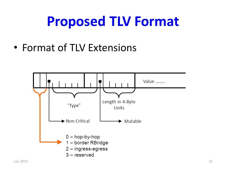 Proposed TLV Format Format of TLV Extensions Value ……..