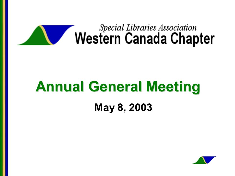 Annual General Meeting May 8, 2003