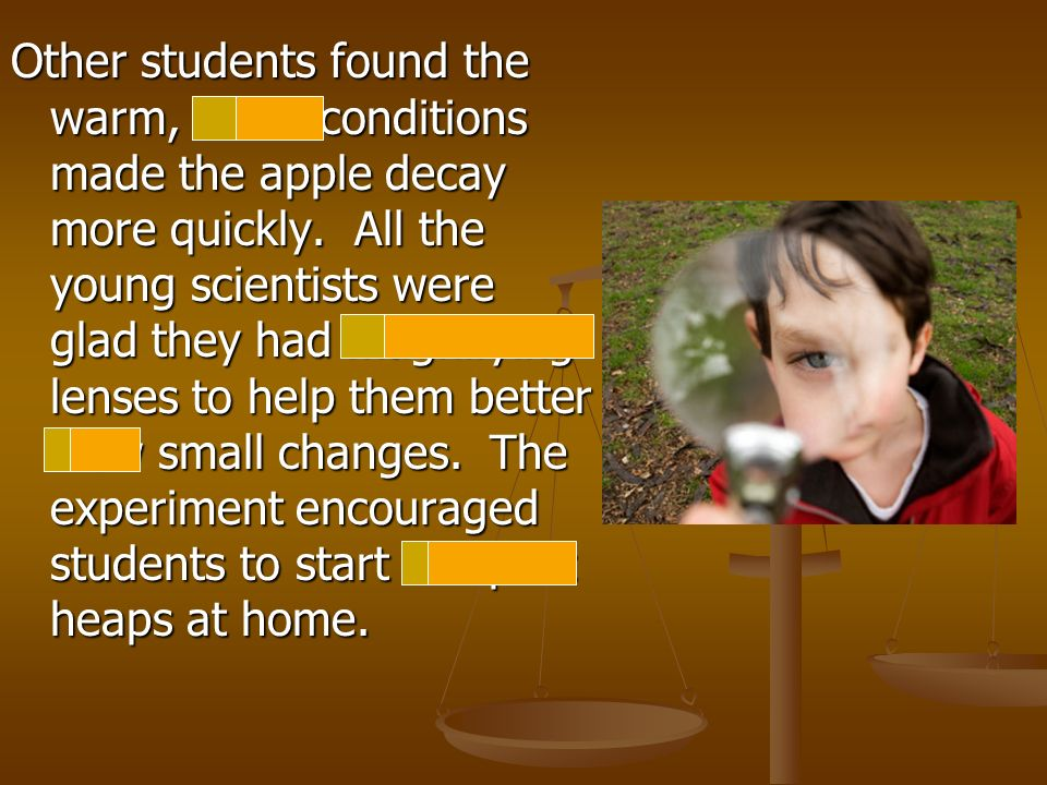 Other students found the warm, moist conditions made the apple decay more quickly.