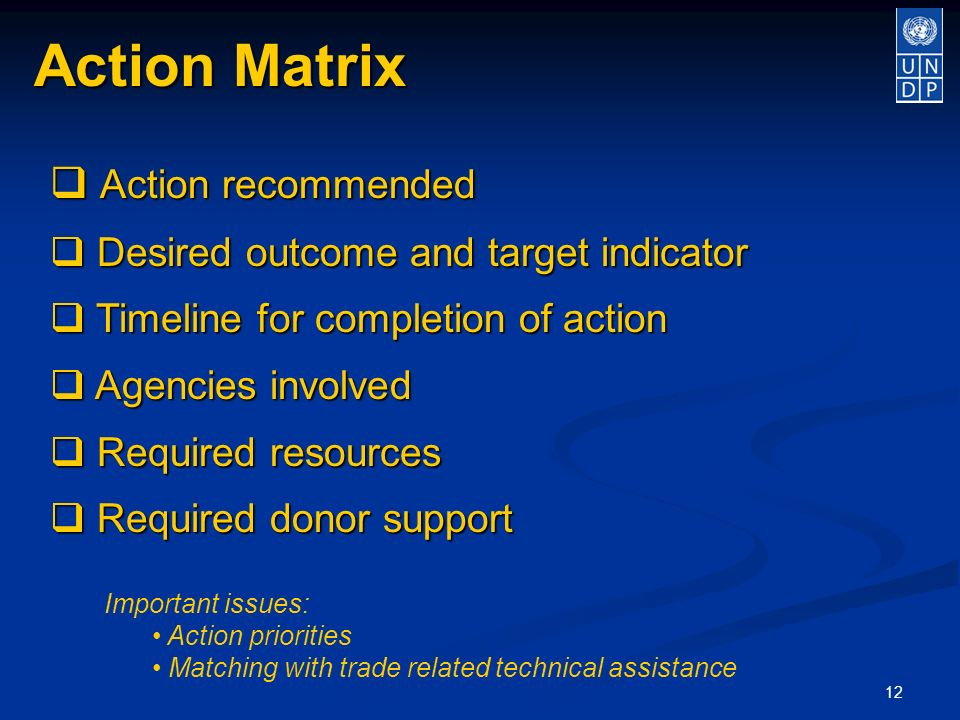 12 Action Matrix Action recommended Action recommended Desired outcome and target indicator Desired outcome and target indicator Timeline for completion of action Timeline for completion of action Agencies involved Agencies involved Required resources Required resources Required donor support Required donor support Important issues: Action priorities Matching with trade related technical assistance