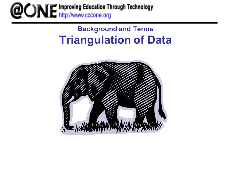 Background and Terms Triangulation of Data