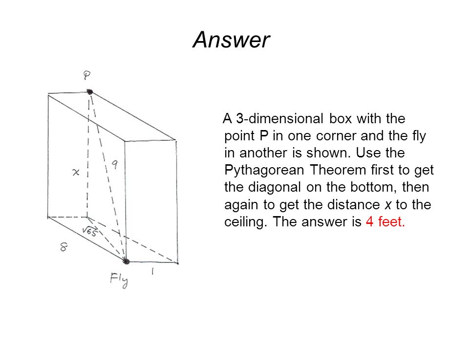 Answer A 3-dimensional box with the point P in one corner and the fly in another is shown.